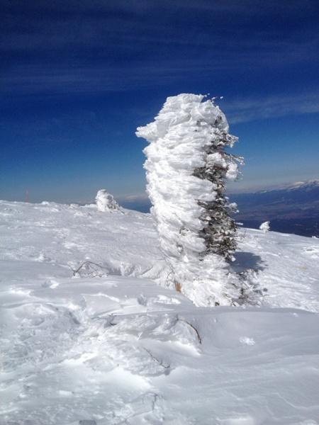 蓼科山の山頂から_c0177814_21374359.jpg