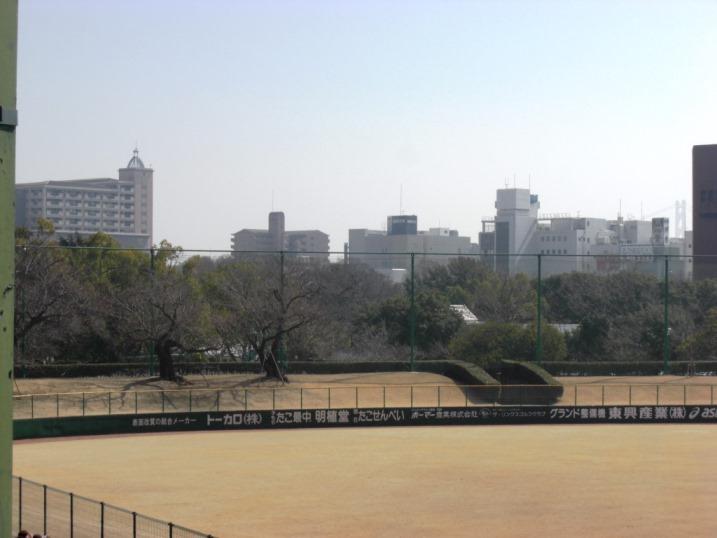 小春日和の野球観戦_b0081121_1975856.jpg