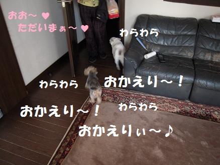 c0139488_15164926.jpg