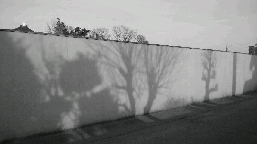 f0155808_179368.jpg