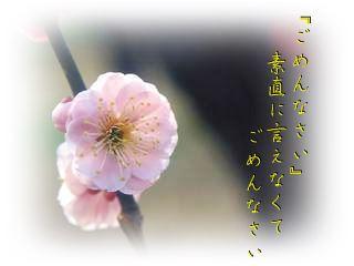 b0166327_2140993.jpg