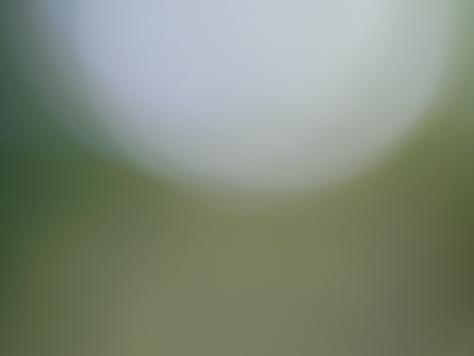b0198151_15282781.jpg