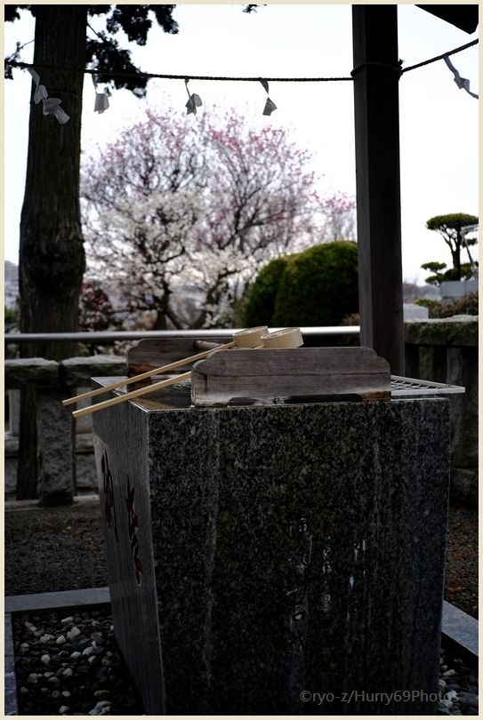 つくし野杉山神社にて X-E1_e0063851_9563653.jpg
