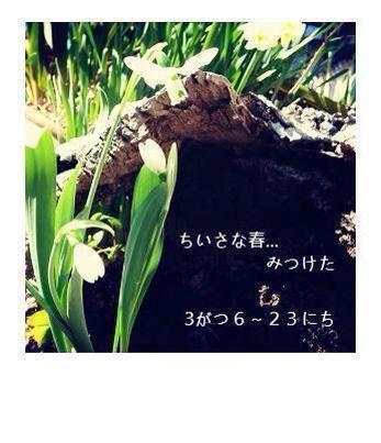 b0159752_9553511.jpg