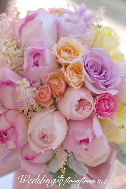 ブログを3月16日までお休みします_a0115684_2083967.jpg