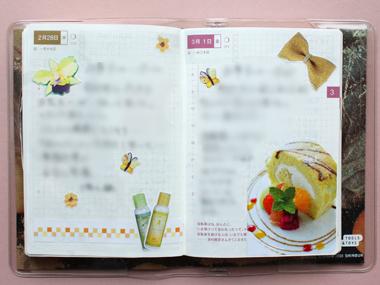 ほぼ日手帳 デイリー(2/28~3/1)_a0275527_042721.jpg