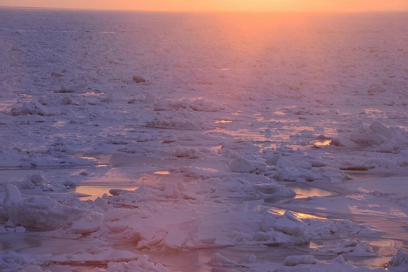 氷は生きている_f0050534_759433.jpg