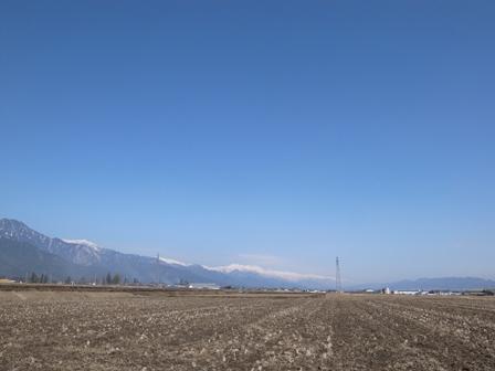3月の風と陽射し_a0014840_2129579.jpg