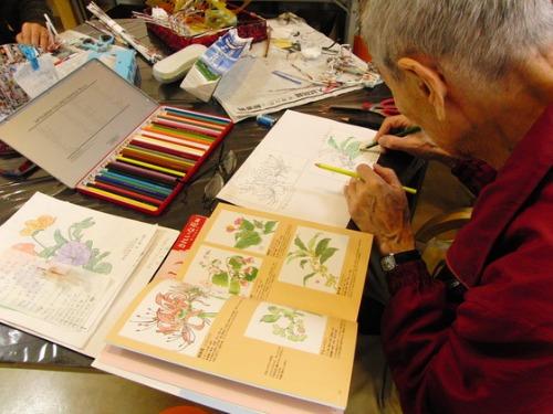 色鉛筆画 ~ O様 植物展 ~_e0222340_15111433.jpg