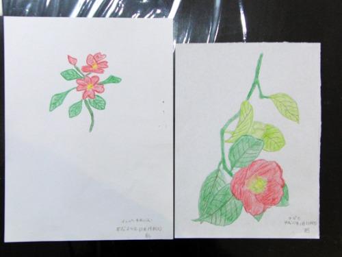 色鉛筆画 ~ O様 植物展 ~_e0222340_15223611.jpg