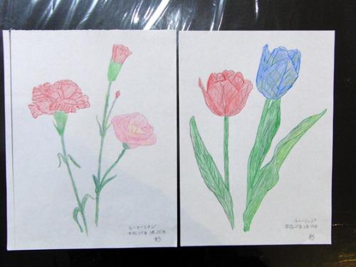 色鉛筆画 ~ O様 植物展 ~_e0222340_15235710.jpg