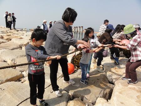 「みんなでワカメを育てよう!収穫祭」 in せんなん里海公園_c0108460_21414665.jpg