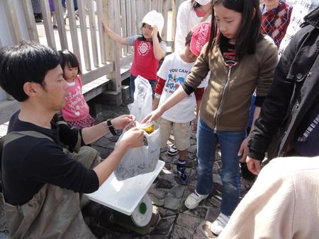 「みんなでワカメを育てよう!収穫祭」 in せんなん里海公園_c0108460_21472477.jpg