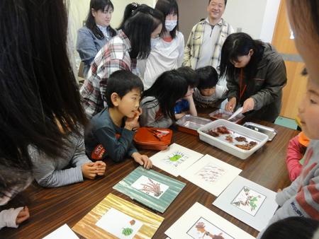 「みんなでワカメを育てよう!収穫祭」 in せんなん里海公園_c0108460_2152294.jpg