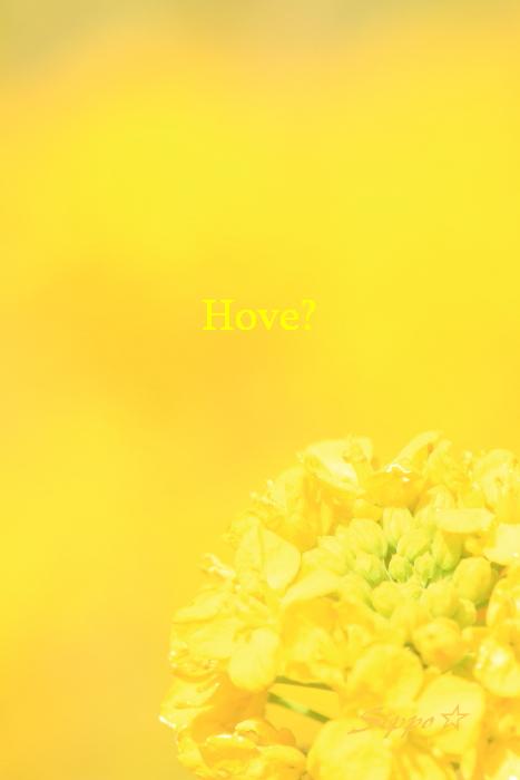 ■■ Spring has come ■■_c0195662_2321429.jpg