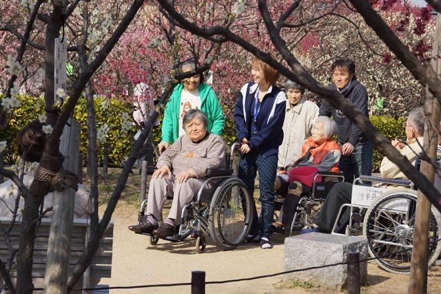 梅の花と可愛い犬たち、気仙沼市 菅原市長に期待、気仙沼菅原市長頑張ってください、梅林が復興を応援_d0181492_2252852.jpg