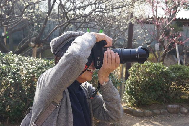 気仙沼の復興にかける菅原市長を応援、頑張れ気仙沼、小野寺大臣にお願い、甲東公民館の梅林は日本一_d0181492_23263998.jpg