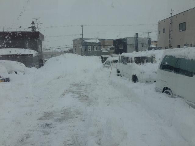 除雪やー_b0127002_17524620.jpg
