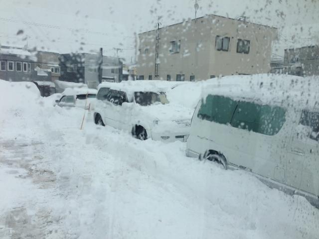 除雪やー_b0127002_17524627.jpg