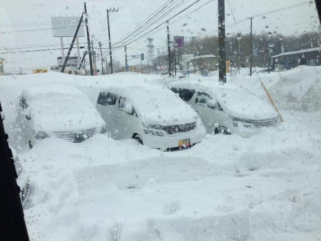 除雪やー_b0127002_17524674.jpg