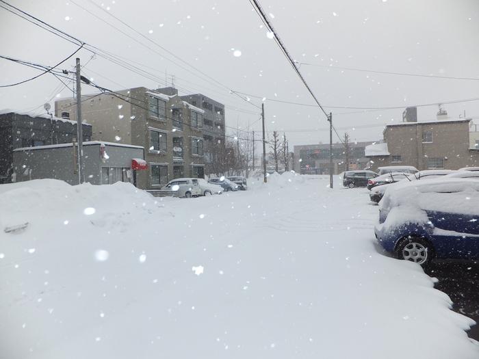 暴風雪 札幌_c0226202_102941100.jpg