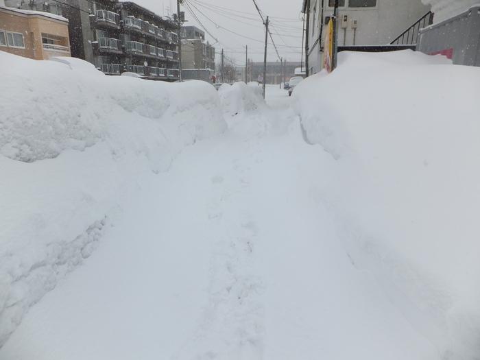 暴風雪 札幌_c0226202_10304689.jpg