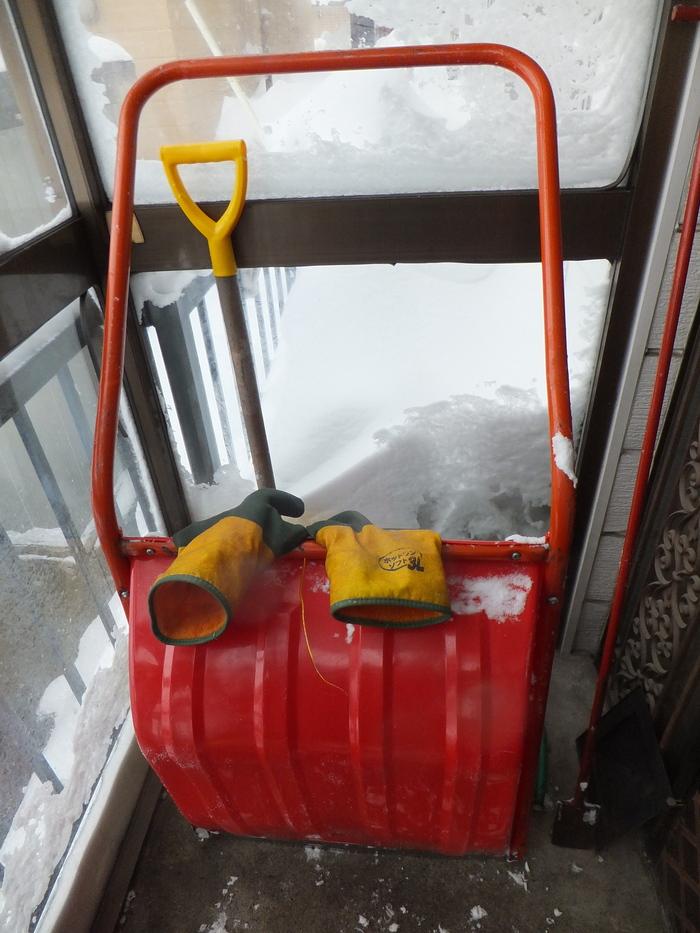 暴風雪 札幌_c0226202_10315784.jpg