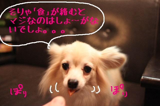 b0130018_091959.jpg