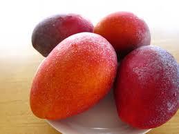 完熟アップルマンゴー 見たことあります?マンゴーの花!_a0254656_18104979.jpg