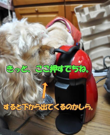b0067012_10441036.jpg