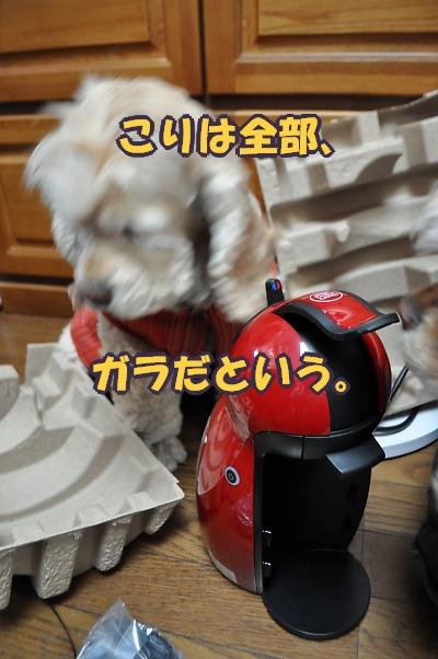 b0067012_10453992.jpg