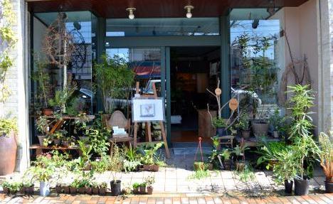 今日の音と植物たち_d0263815_12514062.jpg