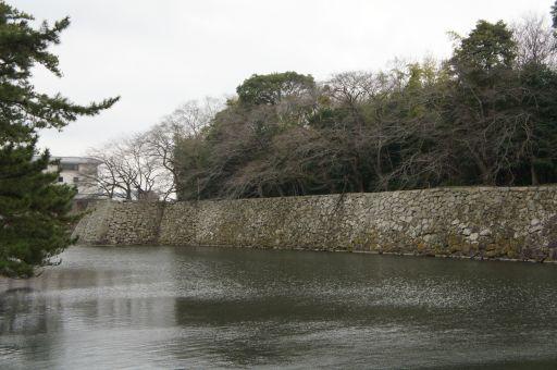 一転、琵琶湖の春は_f0155431_20414785.jpg
