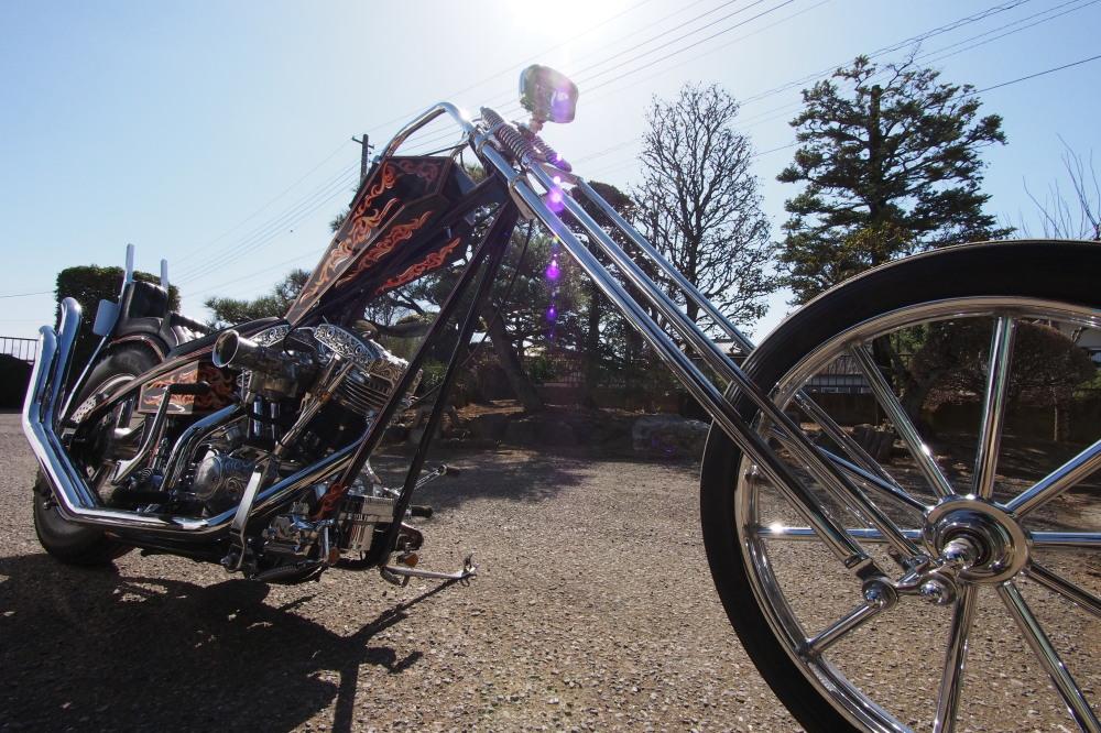 「美術品」としてバイクを眺める_d0122640_2059399.jpg