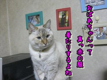 b0151748_12172011.jpg
