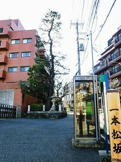 麻布一本松(麻布十番散歩3)_c0187004_841412.jpg