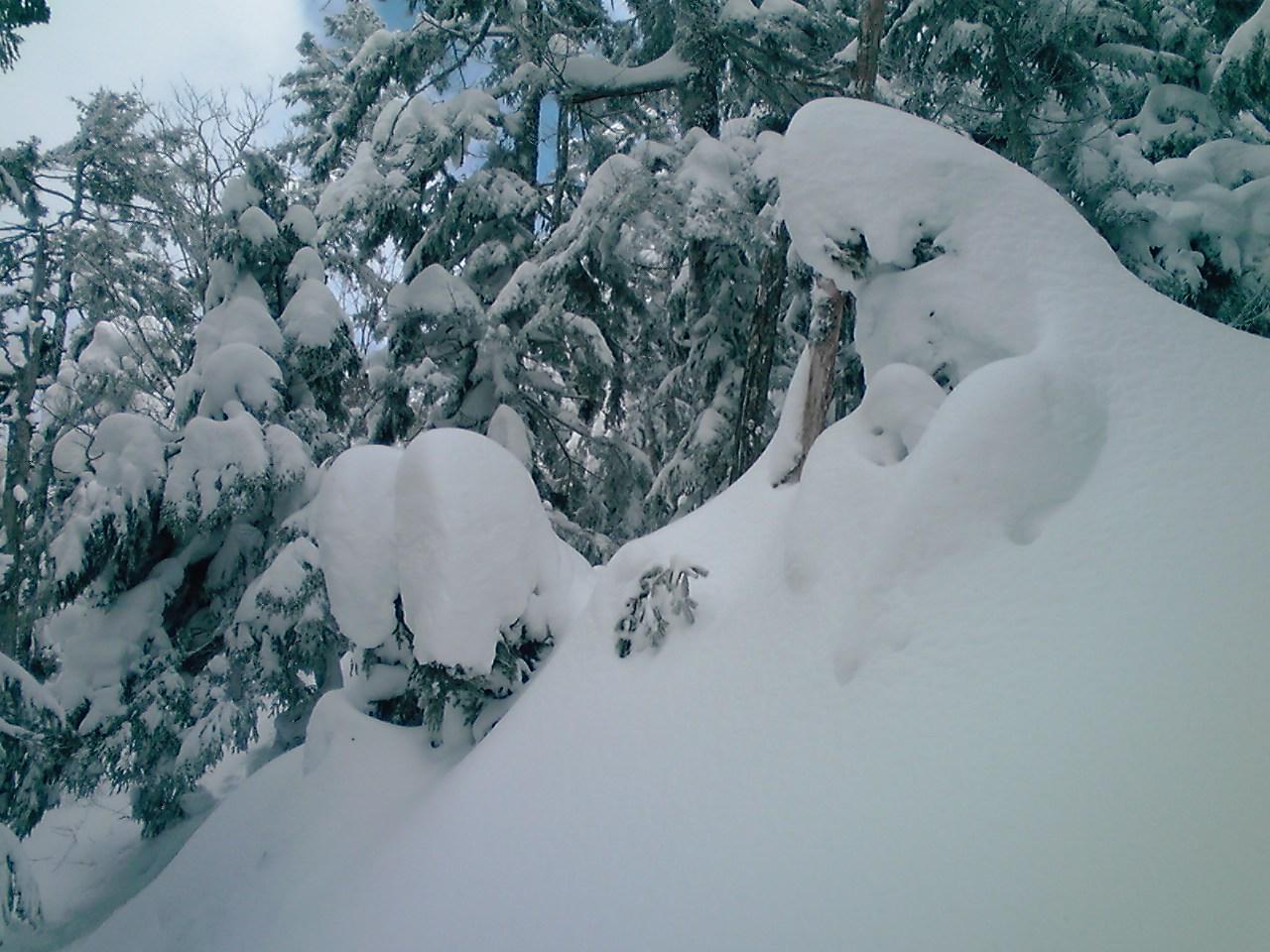 2月末の登山道に_e0155231_746212.jpg