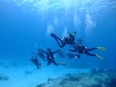 カリブ海の魚たち2♪          COZUMEL/MEXICO_e0184067_11524741.jpg
