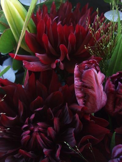 オークリーフ(ダリアとチューリップの花束)_f0049672_12434399.jpg
