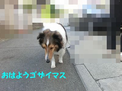 e0222588_1649212.jpg