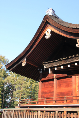 城南宮の梅と椿 雅の世界  京都_d0055236_18322130.jpg