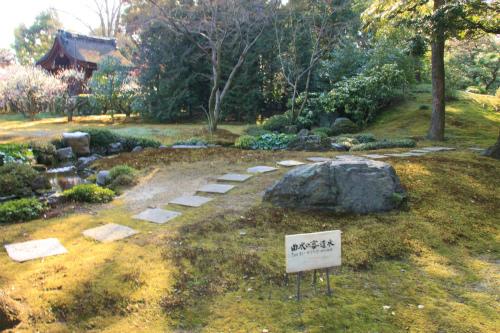 城南宮の梅と椿 雅の世界  京都_d0055236_18392495.jpg