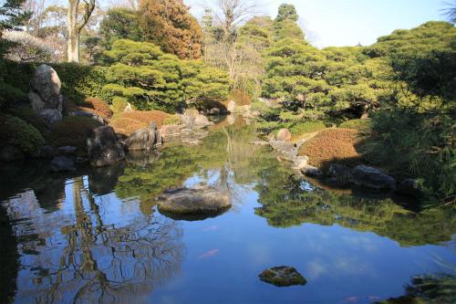 城南宮の梅と椿 雅の世界  京都_d0055236_18403310.jpg
