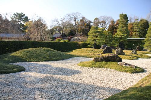 城南宮の梅と椿 雅の世界  京都_d0055236_18405531.jpg