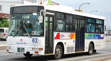 沖縄本島の富士8E  その後_e0030537_1391363.jpg