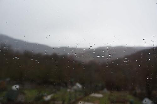 雨の日_f0106597_22151752.jpg