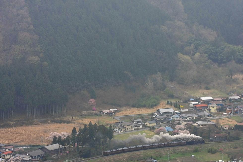 桜と煙の季節 - 2012年・秩父 -  _b0190710_23231119.jpg