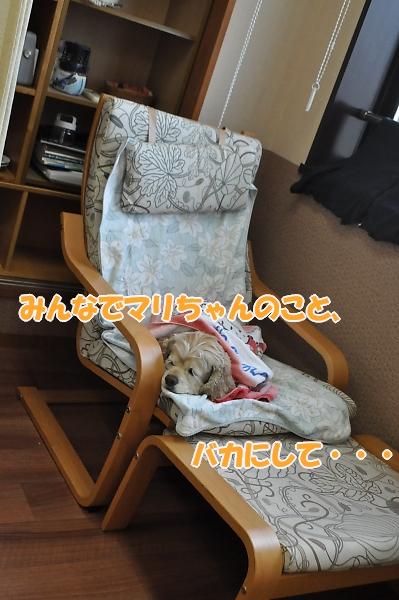 b0067012_115154.jpg