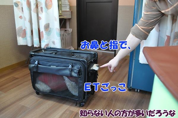 b0067012_181055.jpg