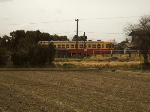 小湊鐵道沿線のスケッチ会の視察へ行きました!_c0131063_18432144.jpg